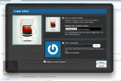 avatar upload dialog box screenshot